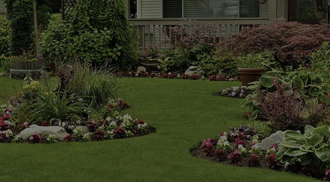 Olivehurst Landscape Design